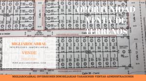 Copia de Copia de Copia de MIGLIAROCABRAL (34)