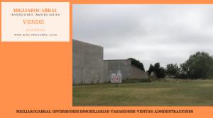 Copia de Copia de MIGLIAROCABRAL - 2021-03-03T152858.663
